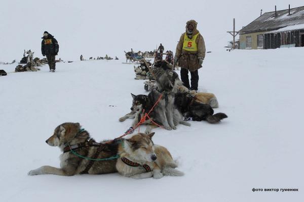 Opening of the Beringia-2018 under threat