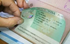 More than 51 000 electronic visas issued in the Far East of Russia